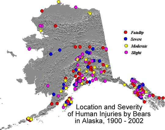 Alaska Map Of Bear Attacks on Very Large Print Word Search