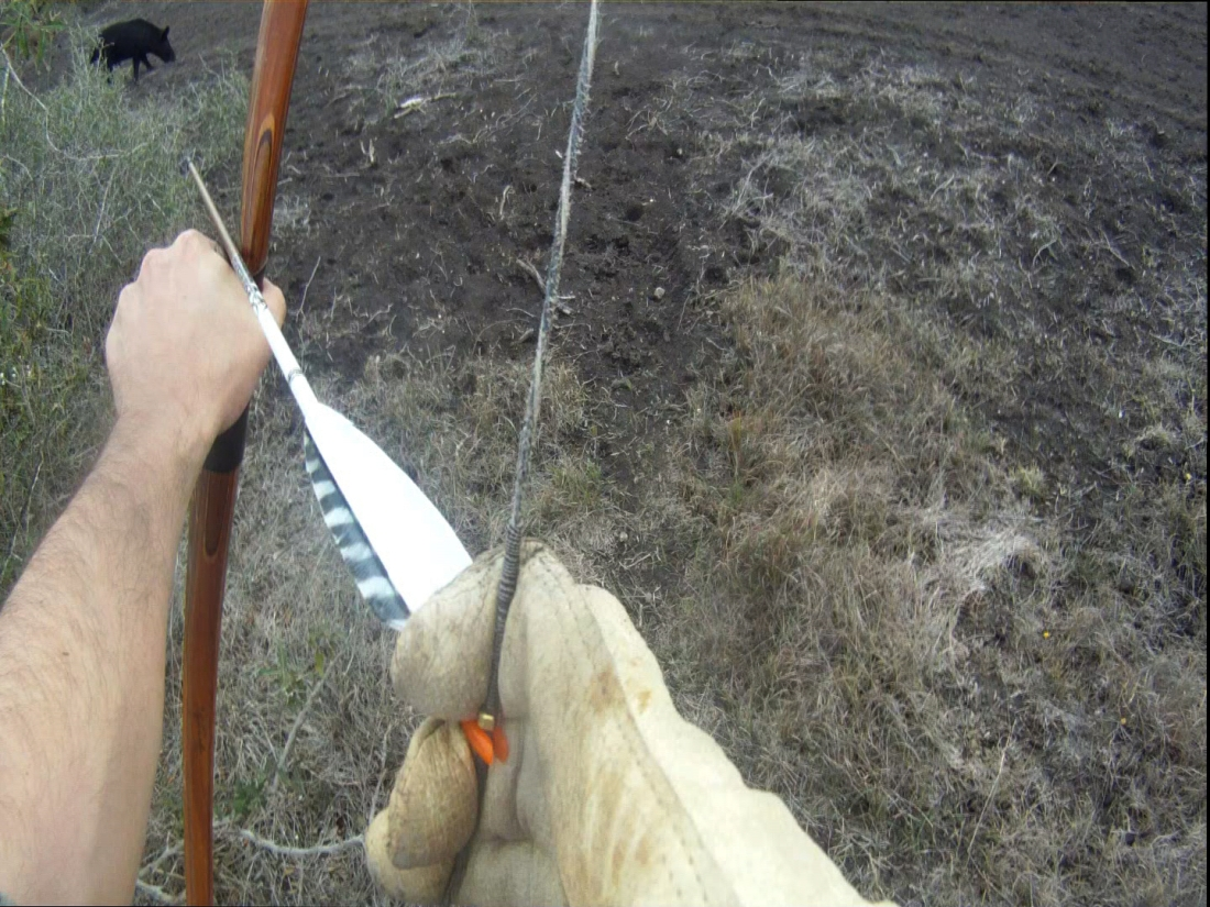 Go-Pro Helmet Cam POV on hog hunt at La Frijolia Ranch with Hidden Antler