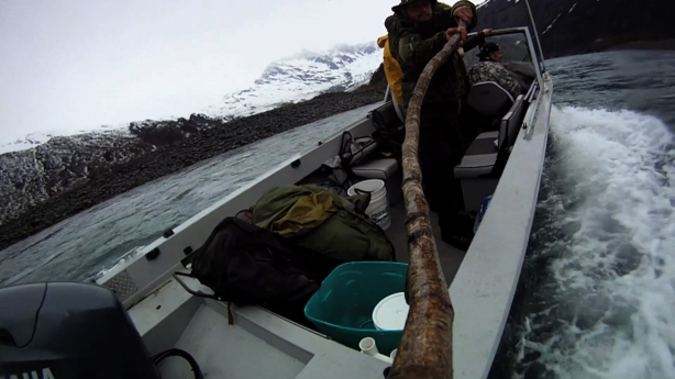 Trick Cam Stick Cam POV, picked up the stick cam pole while on a 14 day 2011 Alaskan Spring Bear Hunt.