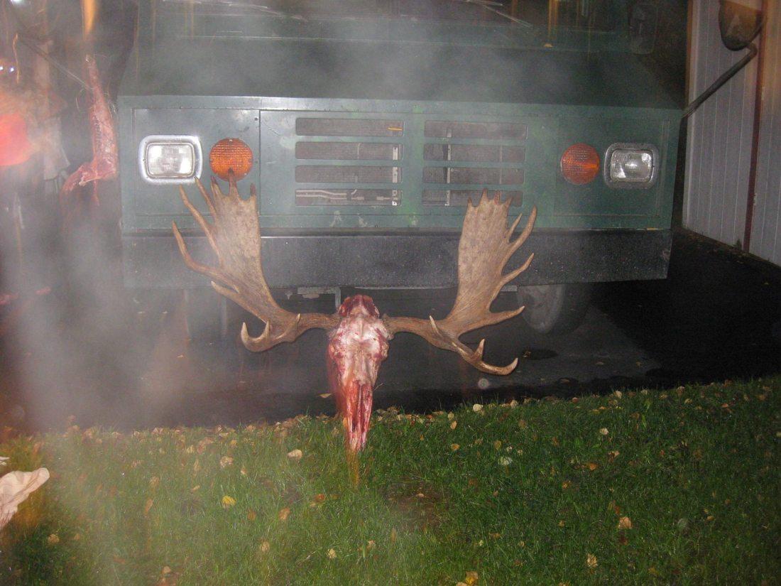 Bridgers moose 2 and the BOSS TANK