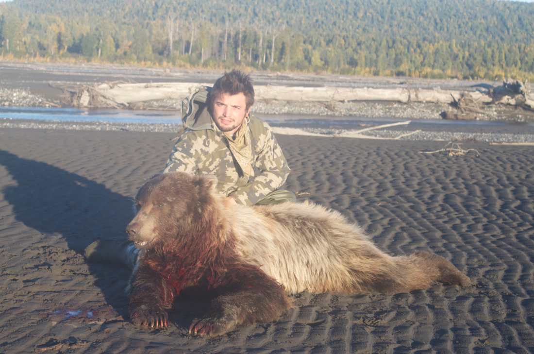Grizzly Bear Hunting 2013