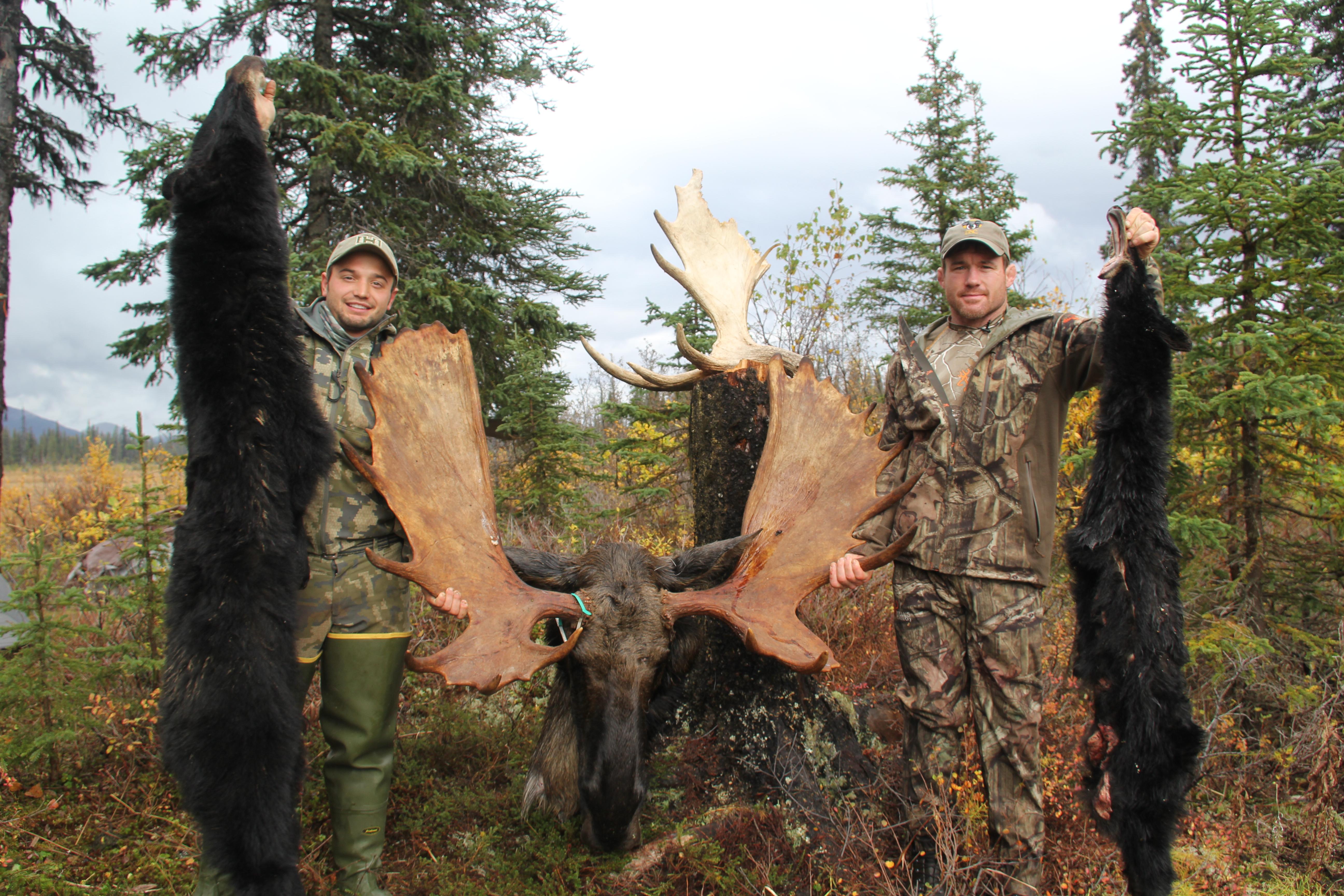8 tips for diy alaskan moose hunting mission alaska solutioingenieria Gallery