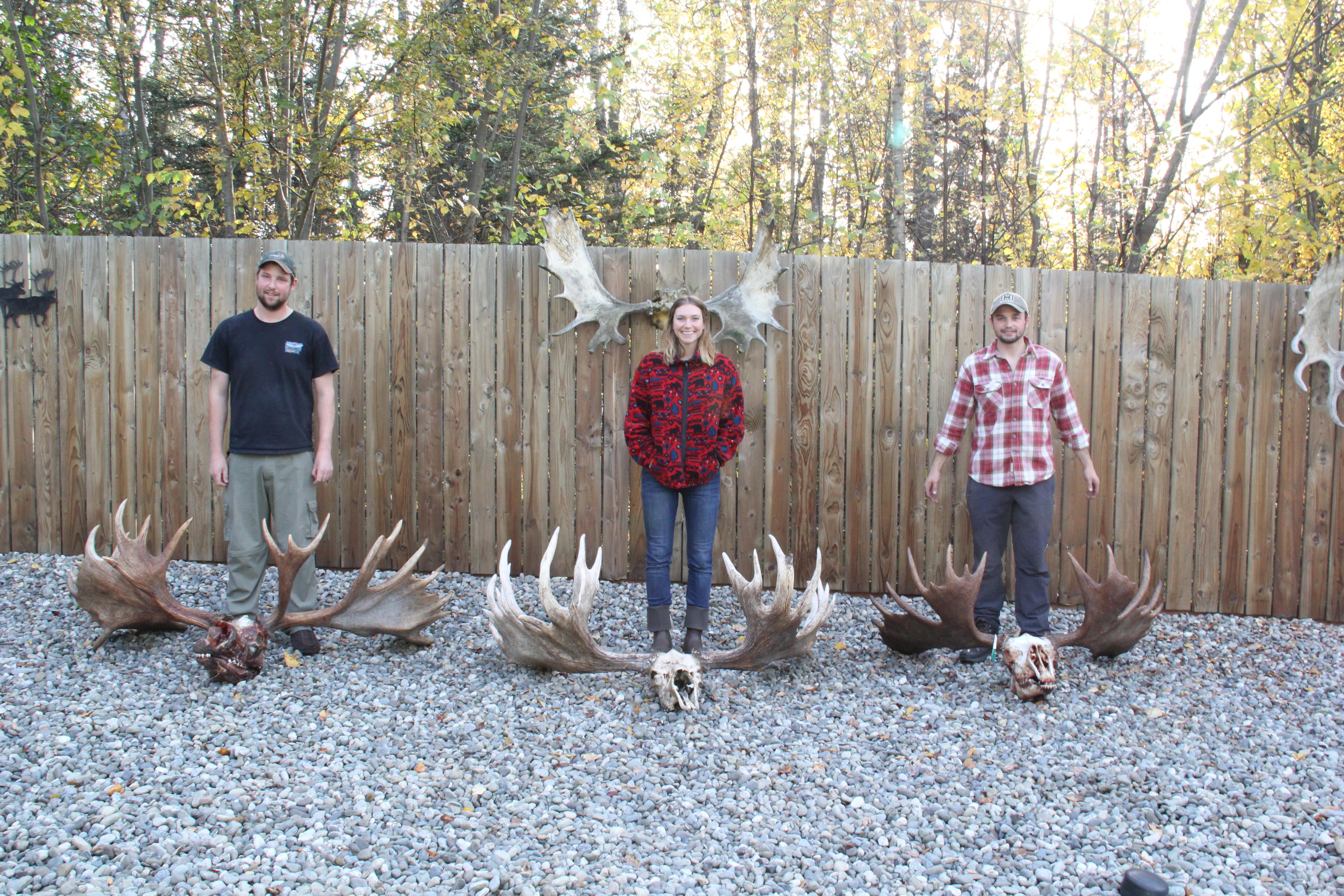 8 tips for diy alaskan moose hunting mission alaska img8116 solutioingenieria Gallery